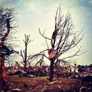 Mattress impaled on a tree (Oklahoma City, OK)